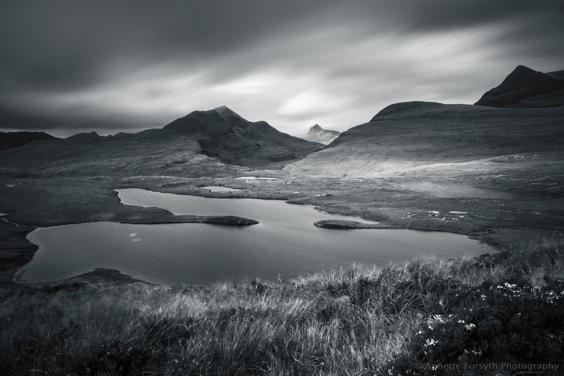 Blowy at Knockan Crag, Assynt, Scotland