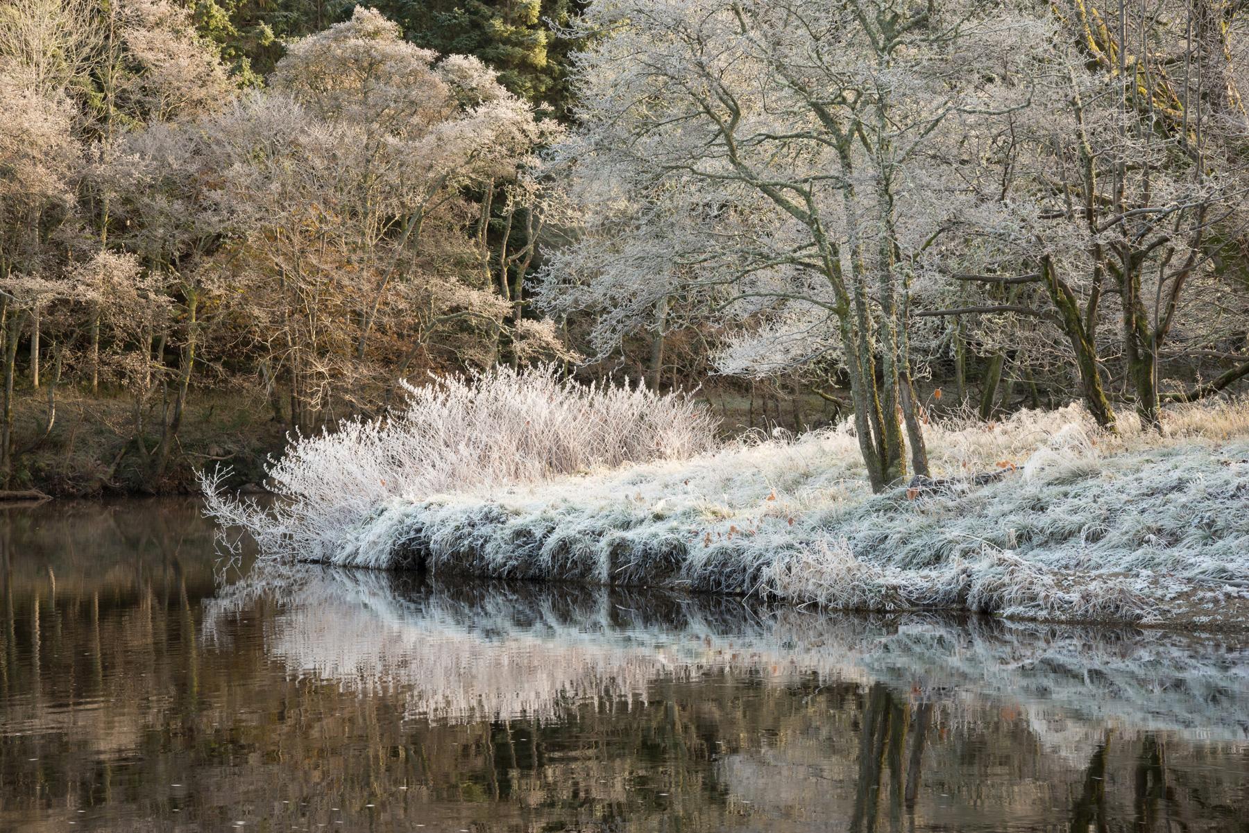Frost am Earn II, Crieff, Strathearn, Perthshire, Schottland