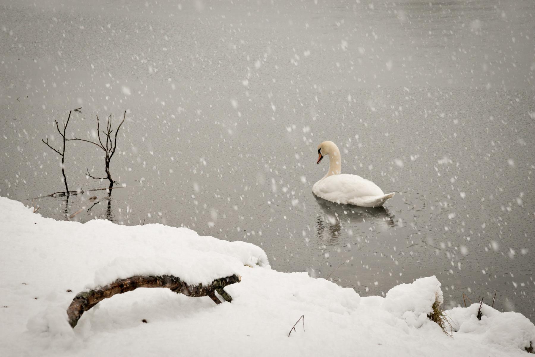 Im tiefsten Winter, Strathearn, Schottland