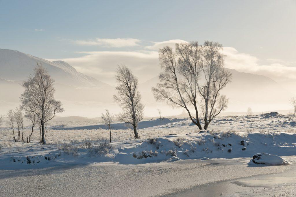 Frostiger Morgen in Rannoch Moor