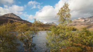 Herbstfarben bei Loch Clair
