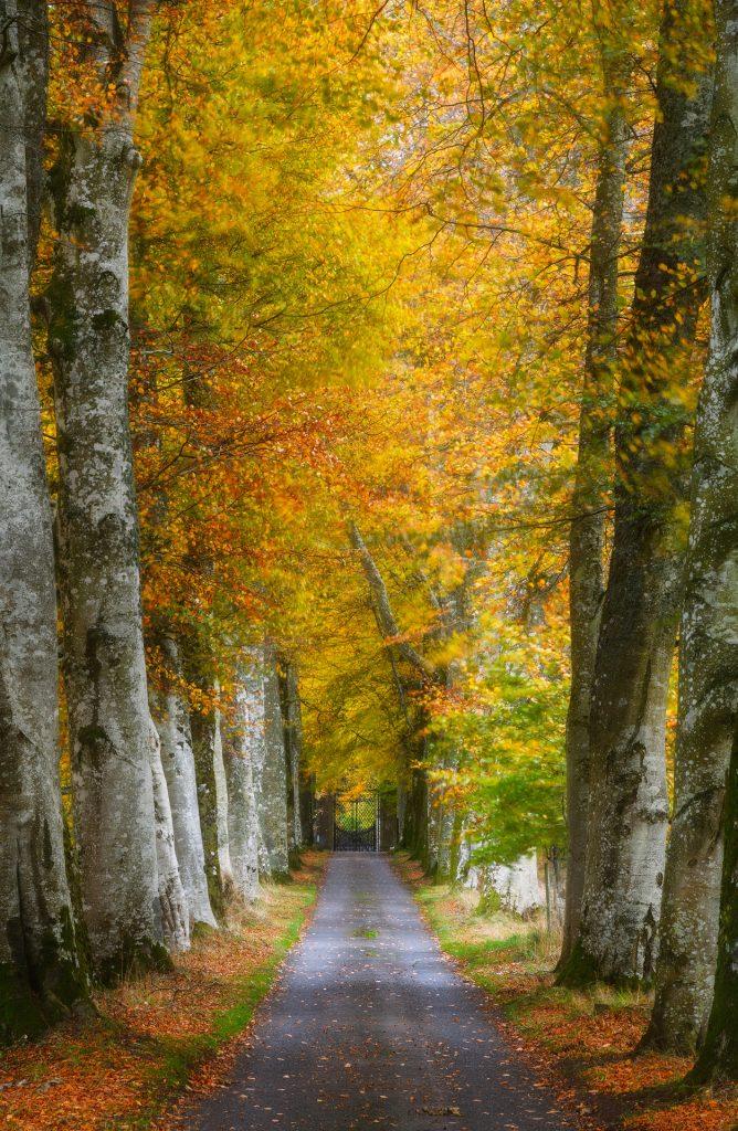 Herbst Zwielicht, Drummond Castle, Crieff