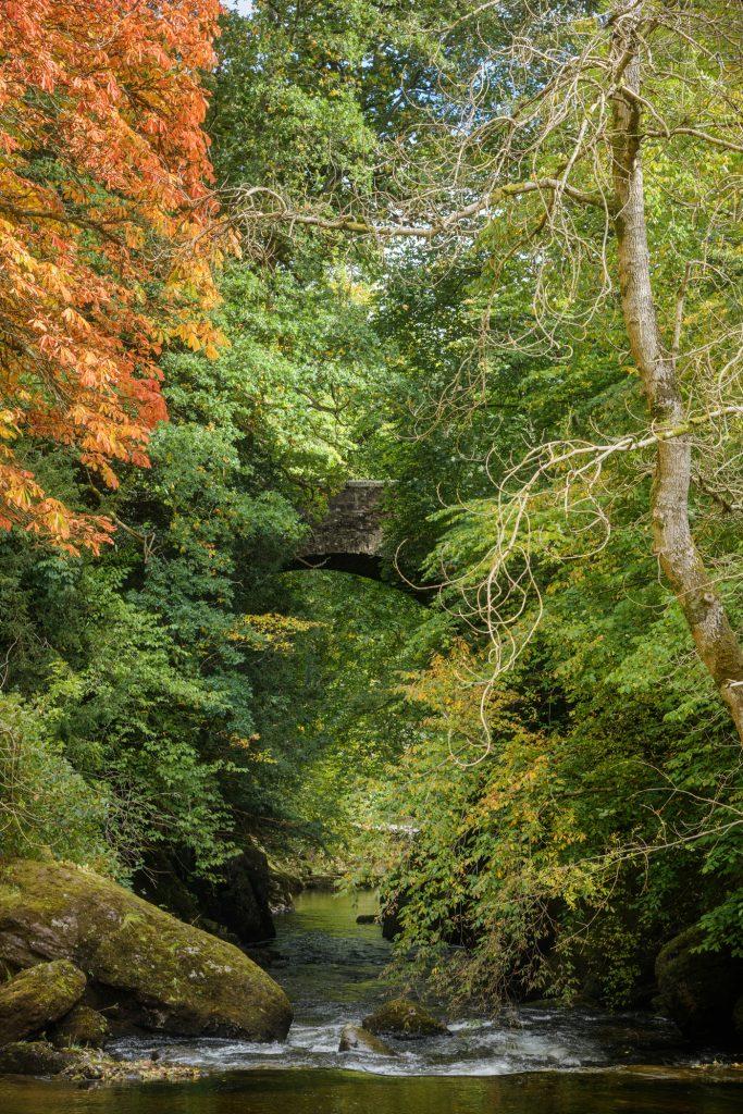 Beginnender Herbst, Buchanty Bridge
